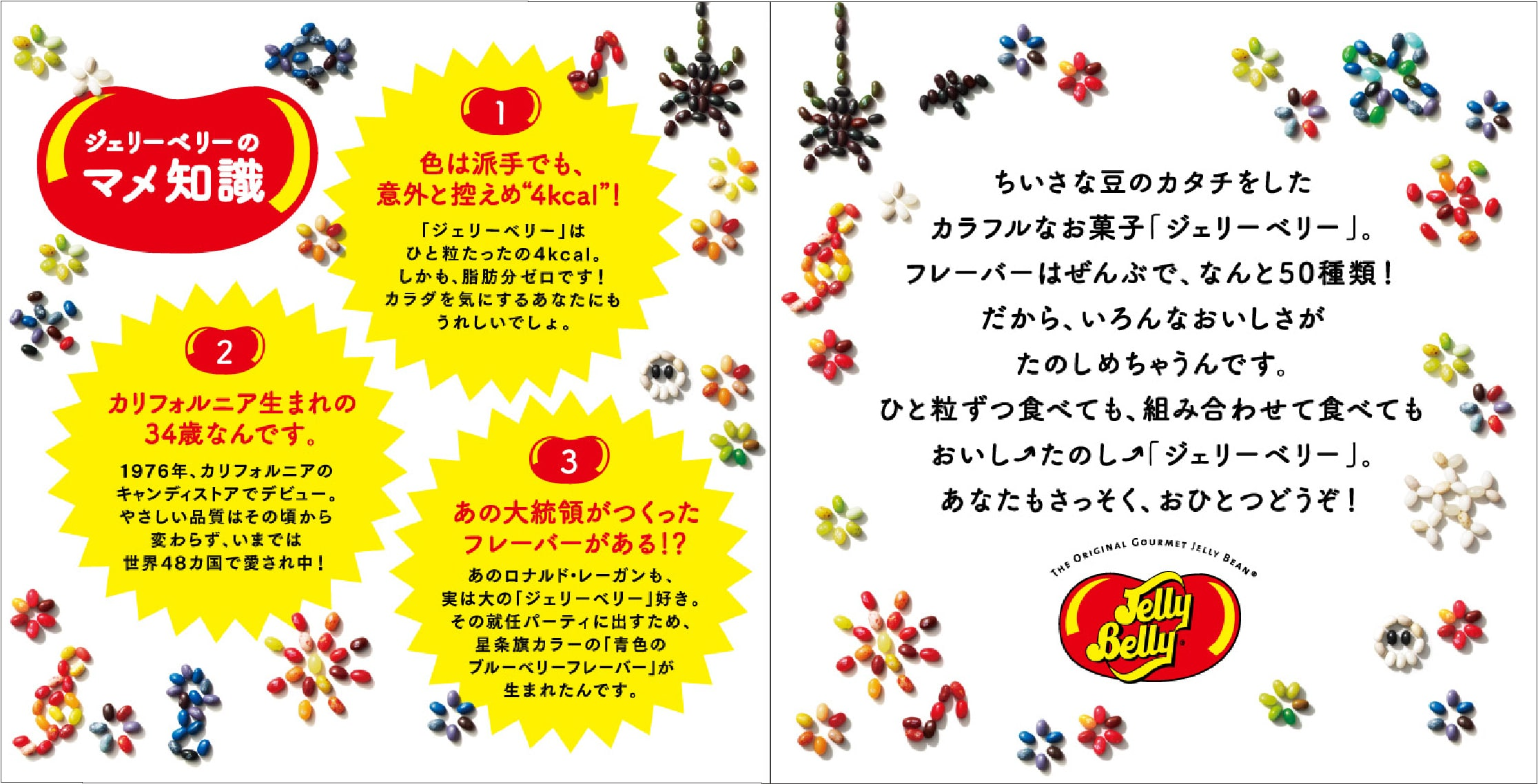 JellyBellyのパンフレット